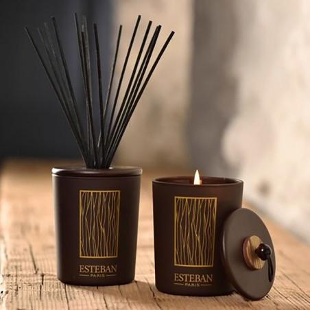Tiges à parfum Esteban - Noire Esteban